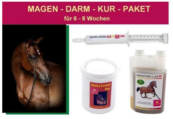 Magen - Darm - Kur - Paket