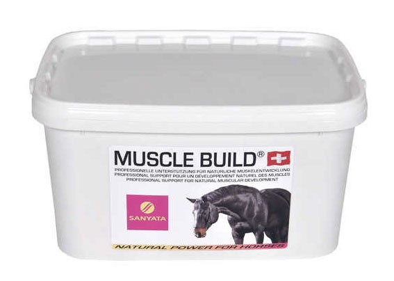 Muscle Build - neue Rezeptur!