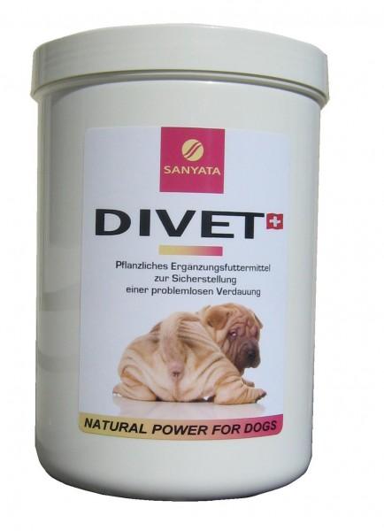 Divet Dog