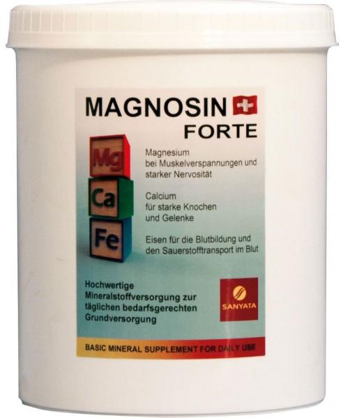Magnosin Forte